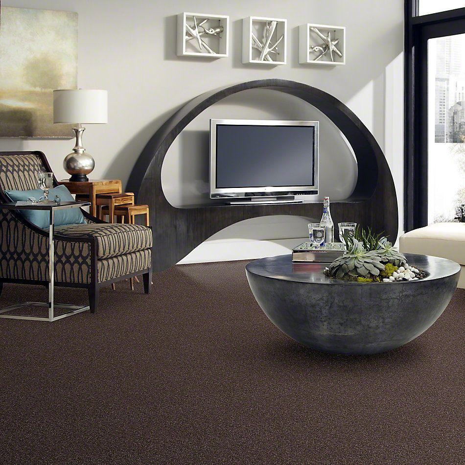 Anderson Tuftex Shaw Design Center East Street Smoky Quartz 00578_852SD