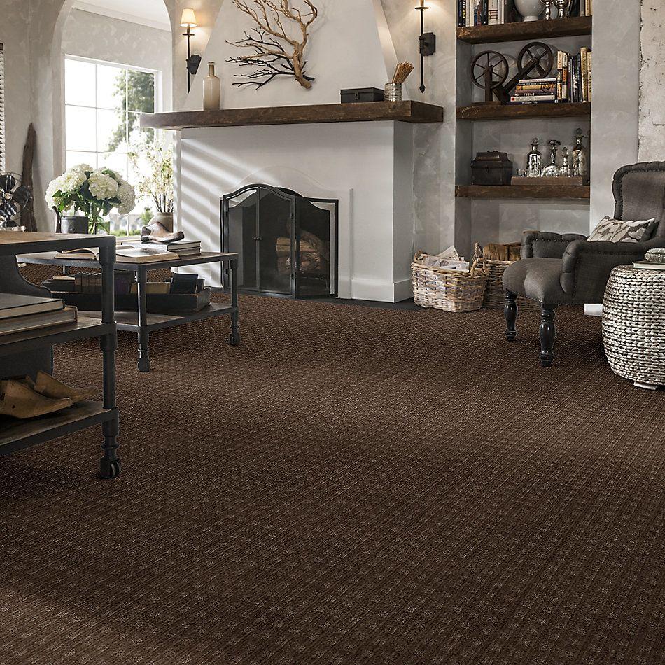 Anderson Tuftex American Home Fashions Life's Memories Mineral 00579_ZA875