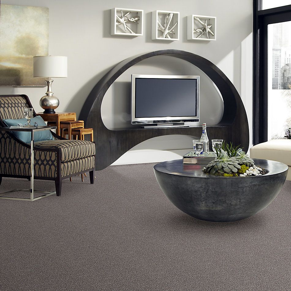 Shaw Floors Value Collections Platinum Texture Accents Net Graphite 00581_E9665