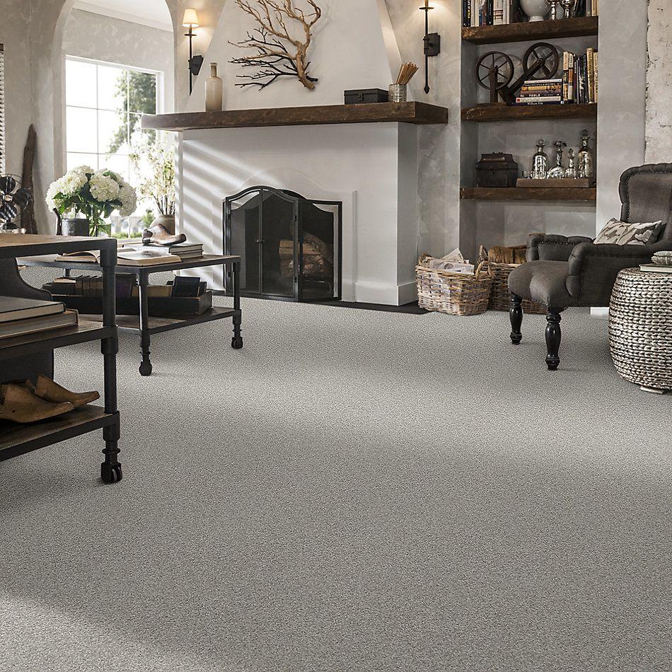 Shaw Floors Foundations Keen Senses I Net Lady In Gray 00590_E9767