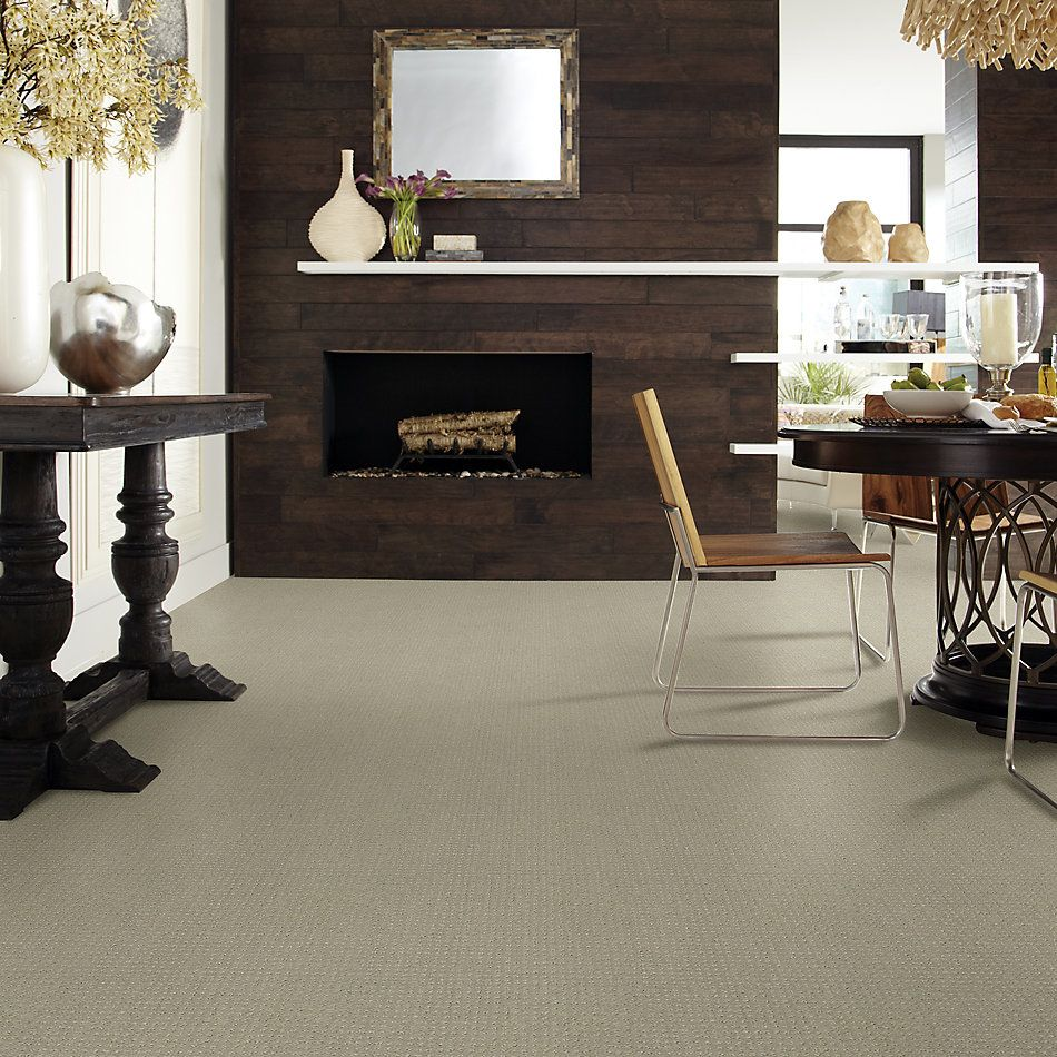 Shaw Floors Foundations Perpetual Move Net Lady In Gray 00590_E9776