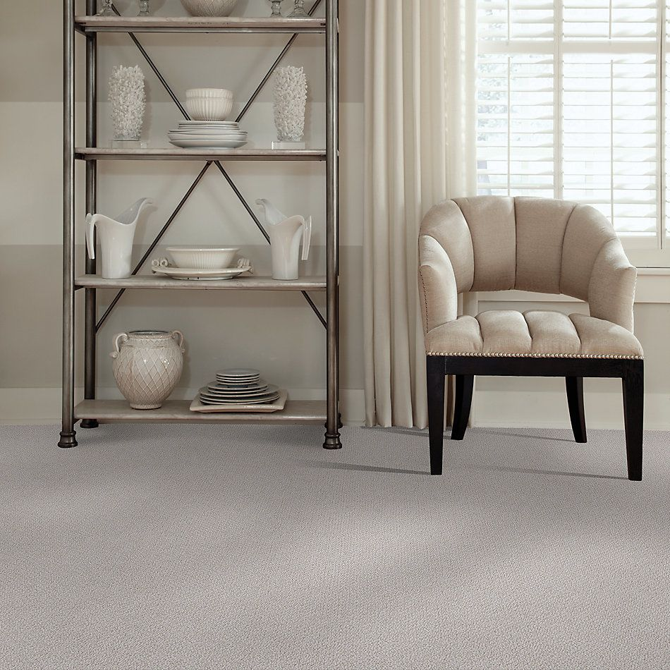 Shaw Floors Foundations Smart Thinking Net Lady In Gray 00590_E9778