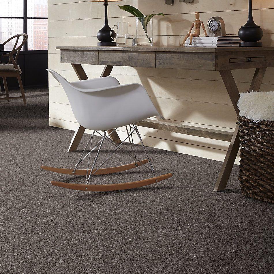Shaw Floors Value Collections Valiant Net Himalayan Trek 00592_5E387