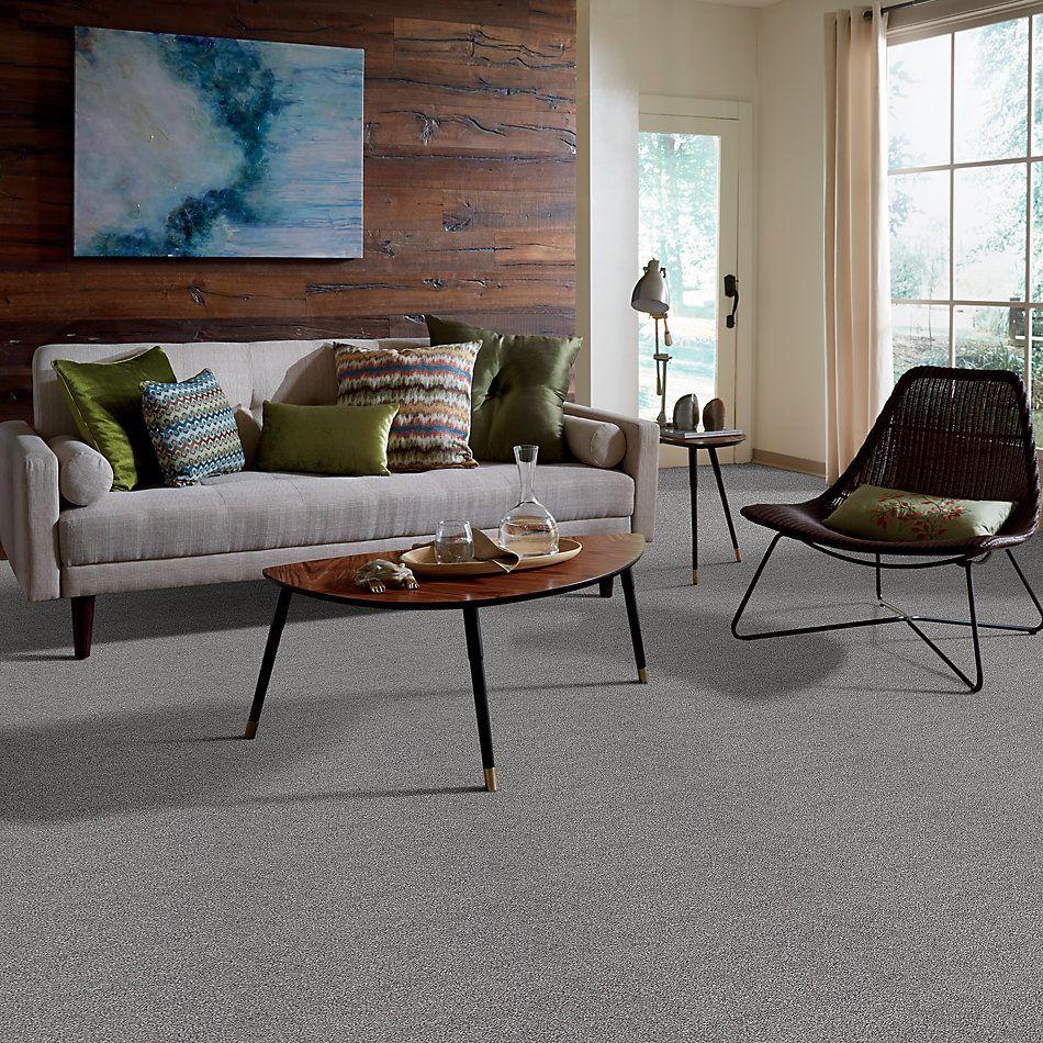 Shaw Floors Foundations Always Ready I Net Washed Gray 00593_E9770