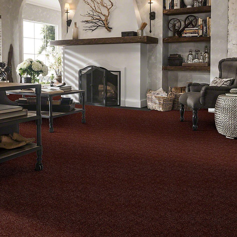 Shaw Floors SFA Enjoy The Moment III 12′ Cattail 00600_0C015