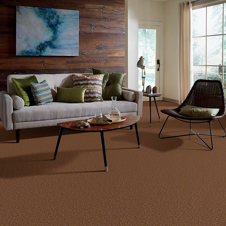 Shaw Floors SFA On Going II 15 Soft Copper 00600_52S37