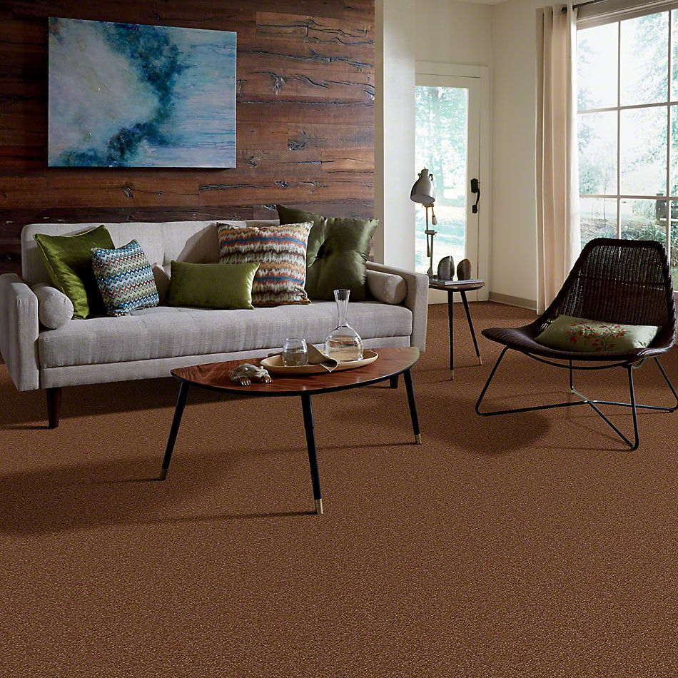 Shaw Floors Town Creek II Soft Copper 00600_52S30