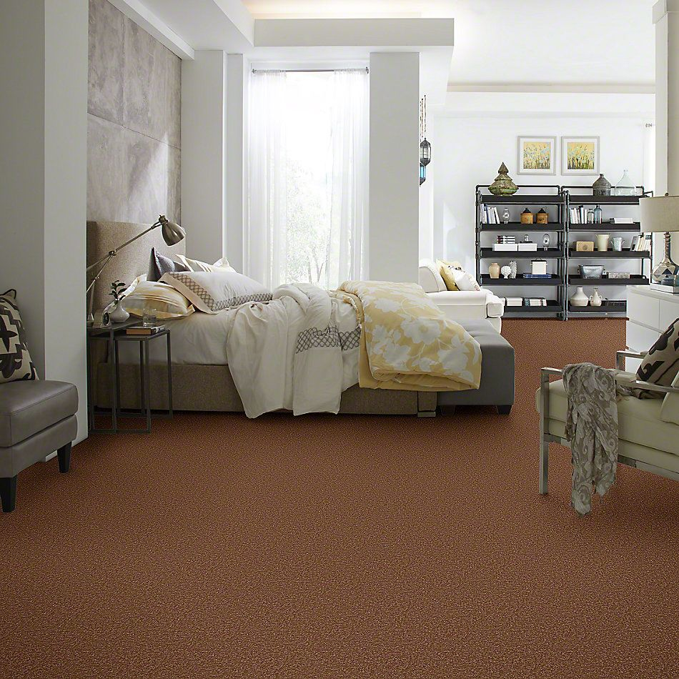 Shaw Floors Shaw Design Center Different Times III 12 Soft Copper 00600_5C496