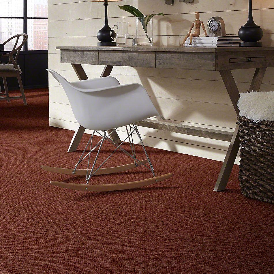 Shaw Floors Shaw Design Center Proven Identity Loop Terra Cotta 00600_5C695