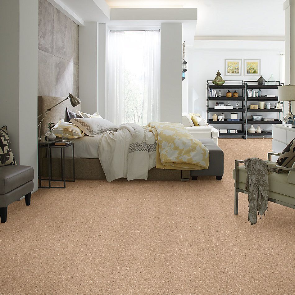 Shaw Floors Caress By Shaw Cashmere II Lg Maplewood North 00600_CC10B