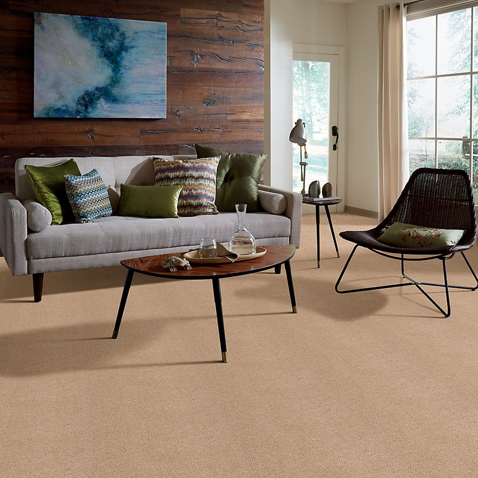 Shaw Floors Caress By Shaw Cashmere Iv Lg Maplewood North 00600_CC12B
