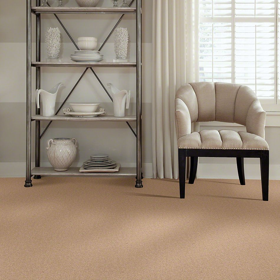 Shaw Floors Caress By Shaw Cashmere Classic II Maplewood North 00600_CCS69