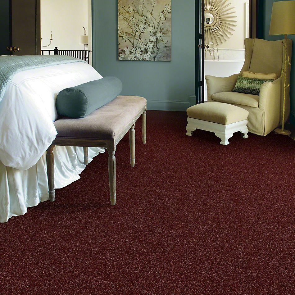Shaw Floors Vermont (s)12′ Sienna 00600_E0263