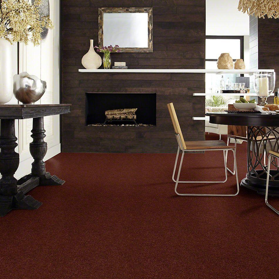 Shaw Floors Enduring Comfort II Terra Cotta 00600_E0342