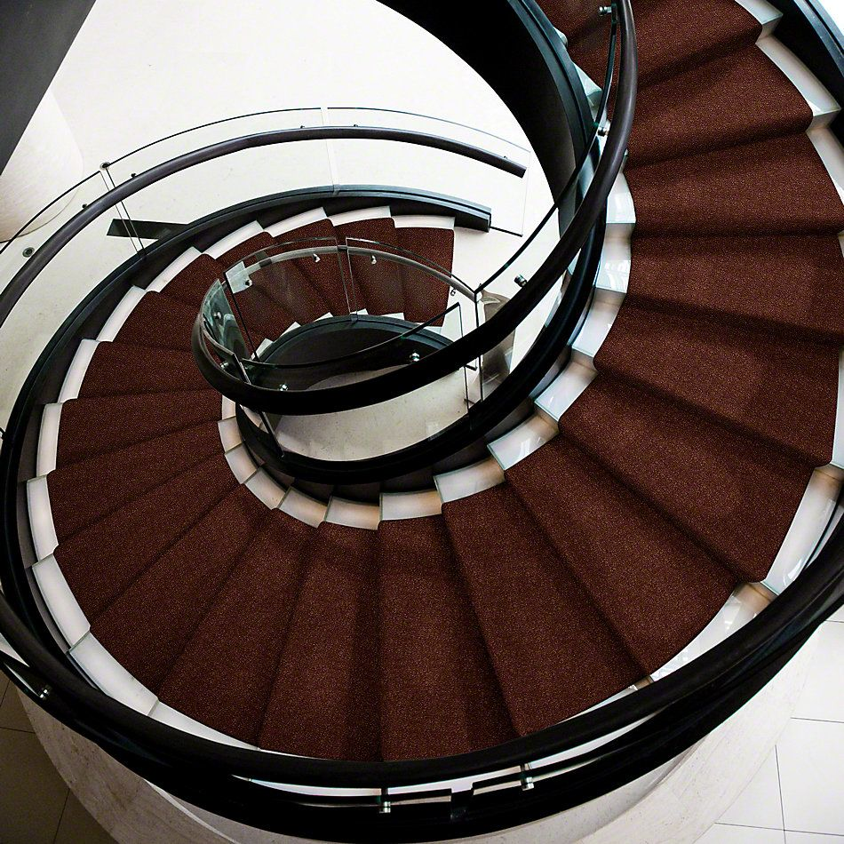 Shaw Floors Value Collections Secret Escape III Net Cinnamon Roll 00600_E0805