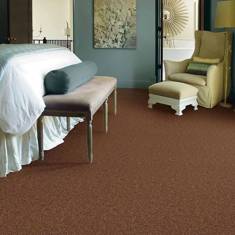 Shaw Floors Value Collections Passageway 3 Net Soft Copper 00600_E9377