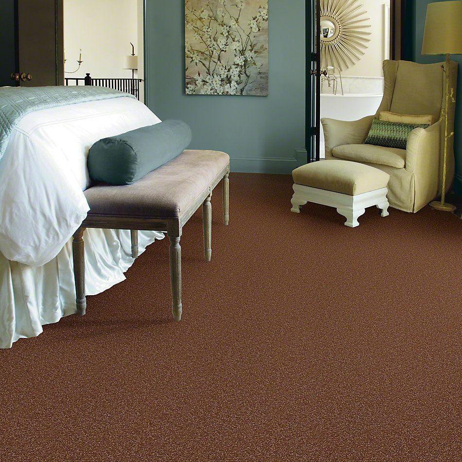 Shaw Floors Shaw Flooring Gallery Invite Possibility III Soft Copper 00600_Q316G