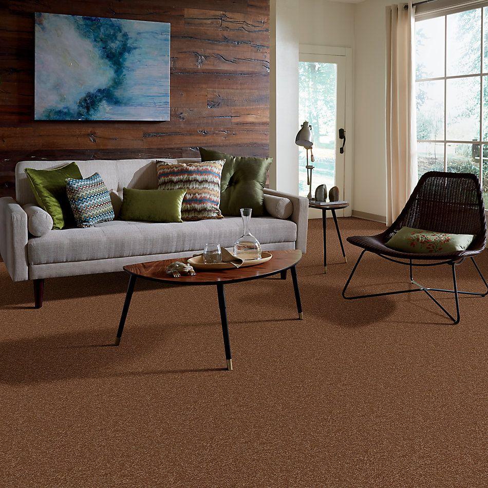 Shaw Floors Queen Harborfields I 12′ Soft Copper 00600_Q4718