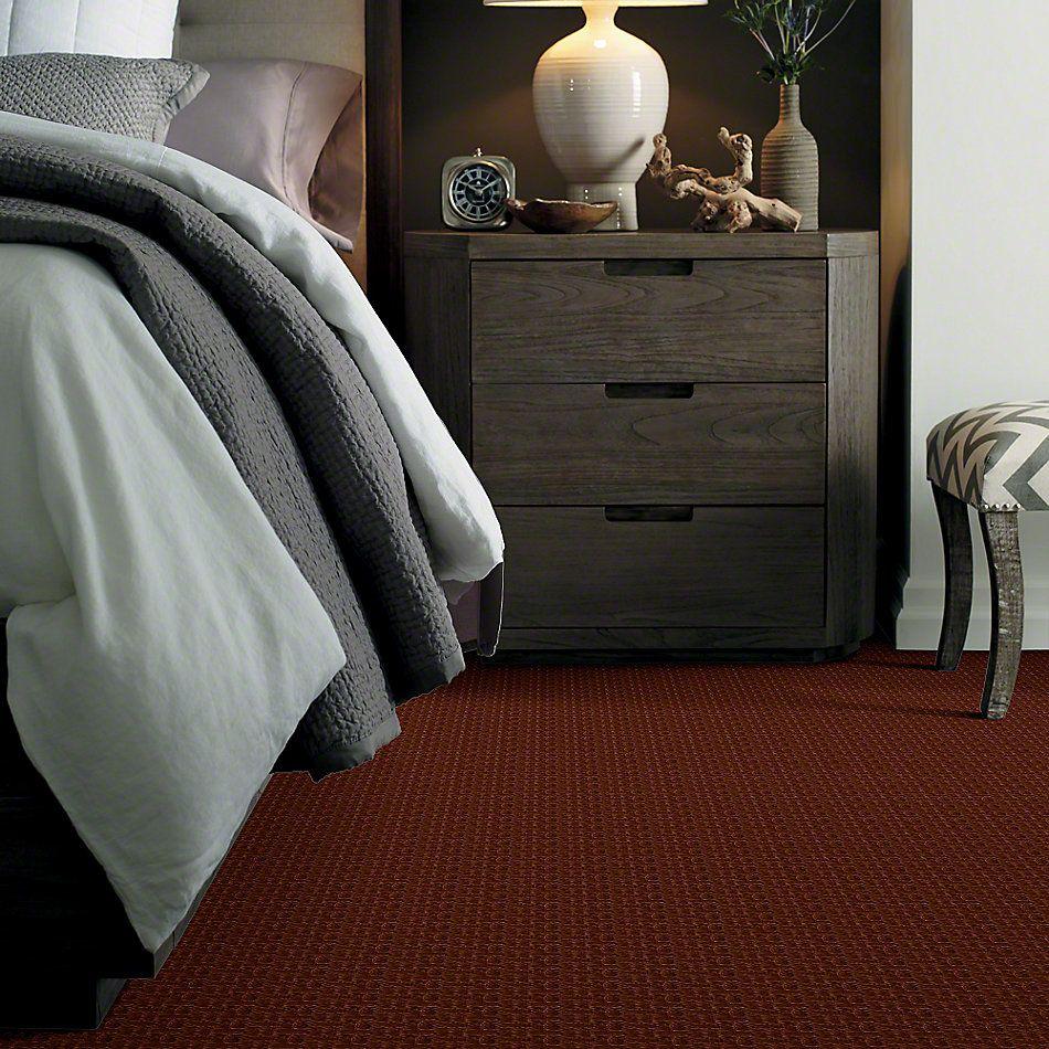 Shaw Floors Roll Special Xv805 Sienna 00600_XV805