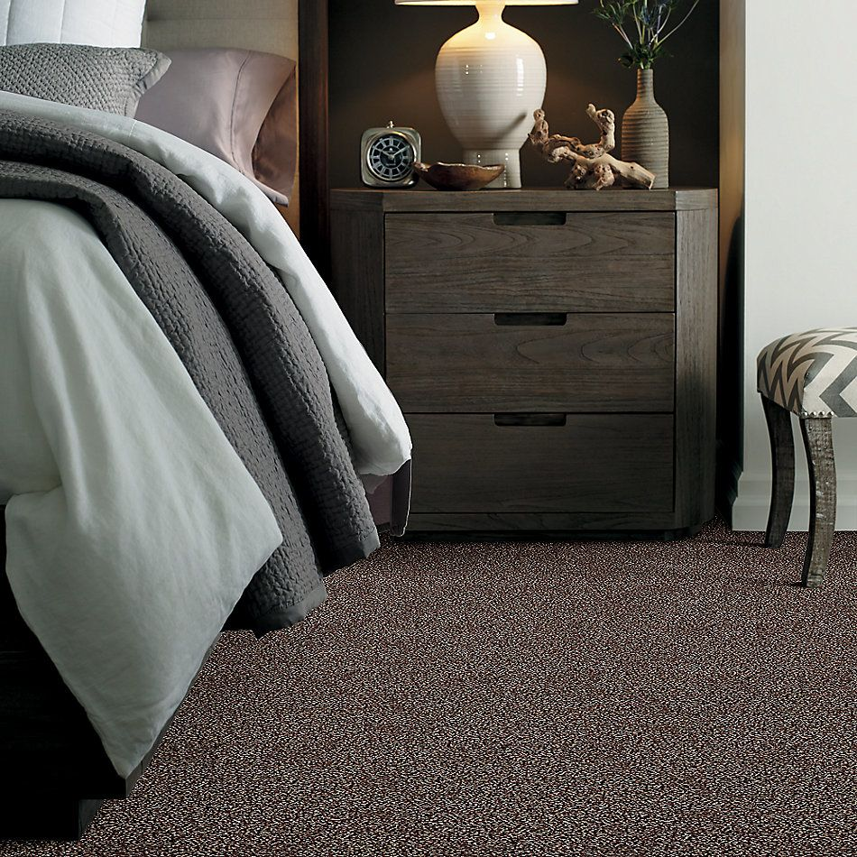 Shaw Floors Roll Special Xy178 Copper Mine 00600_XY178