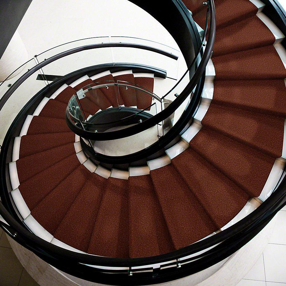 Shaw Floors Shaw Flooring Gallery Highland Cove II 12 Maple Leaf 00601_5221G