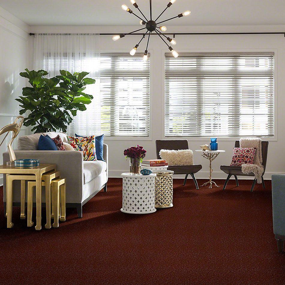 Shaw Floors Foundations Passageway II 12 Maple Leaf 00601_52S24