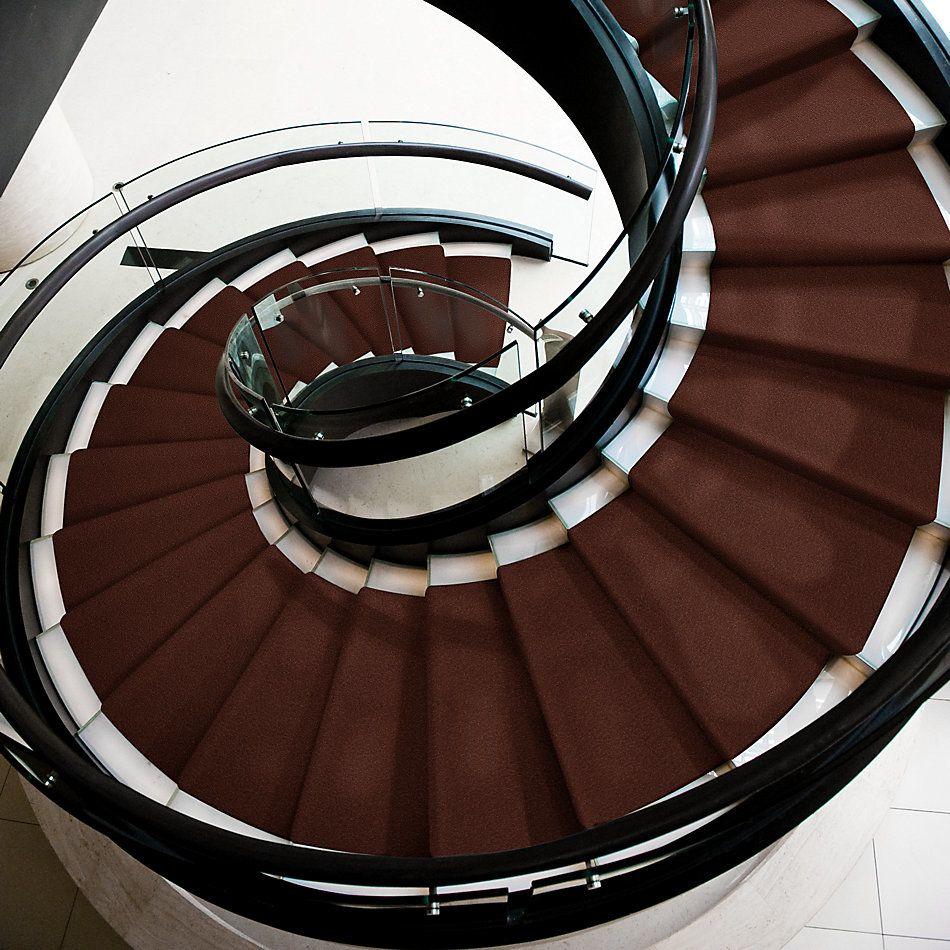 Shaw Floors Shaw Floor Studio Bright Spirit I 12 Spanish Tile 00601_Q4648