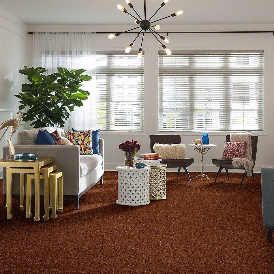 Shaw Floors Sandy Hollow II 15′ Dark Amber 00602_Q4276