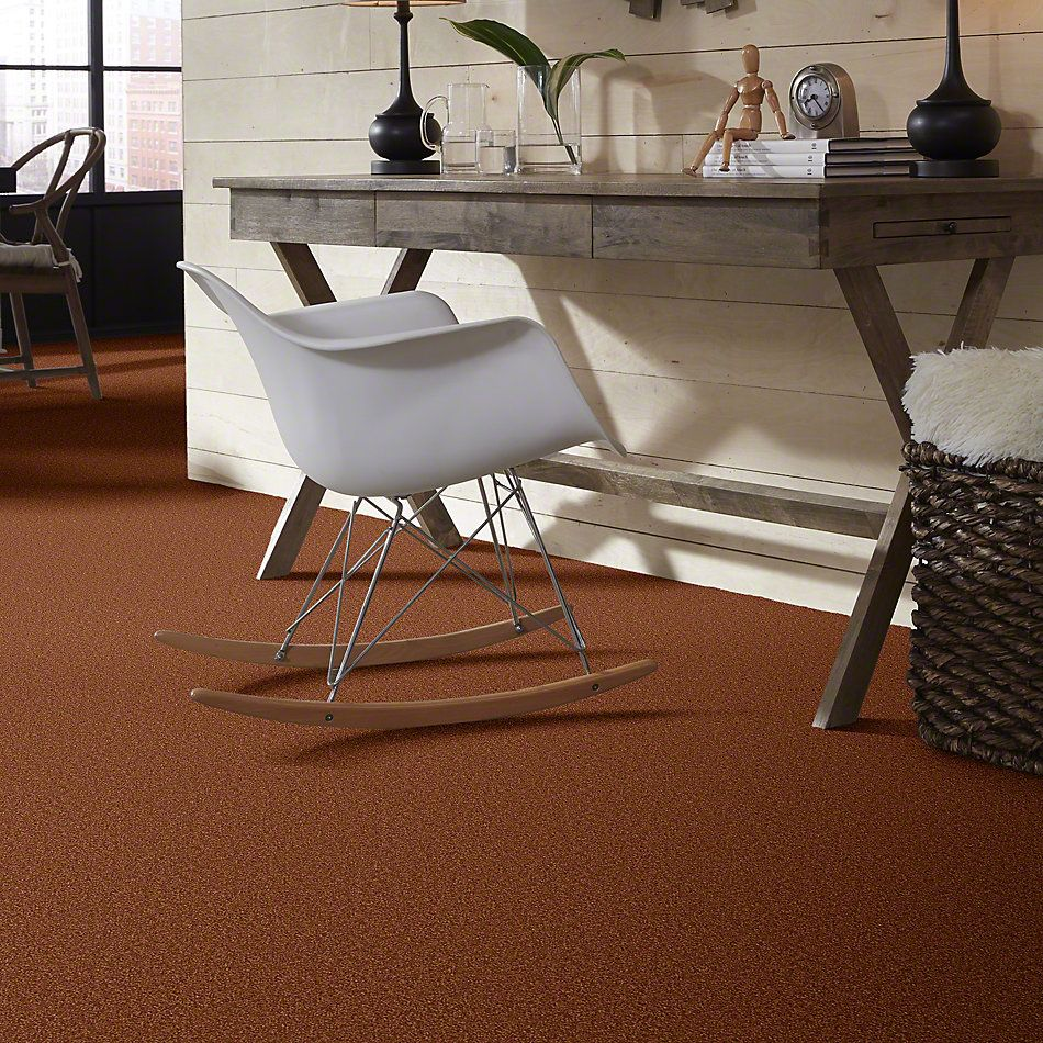 Shaw Floors SFA Timeless Appeal III 15′ Dark Amber 00602_Q4315