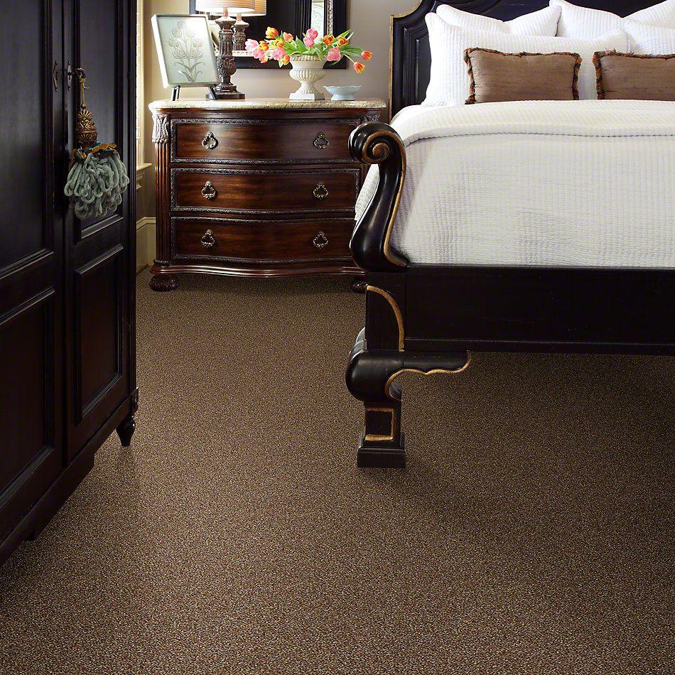 Shaw Floors Bellera Points Of Color II Bronze 00602_E9643