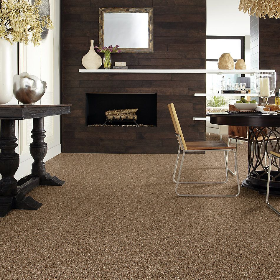 Shaw Floors Bellera Points Of Color I Net Bronze 00602_E9785