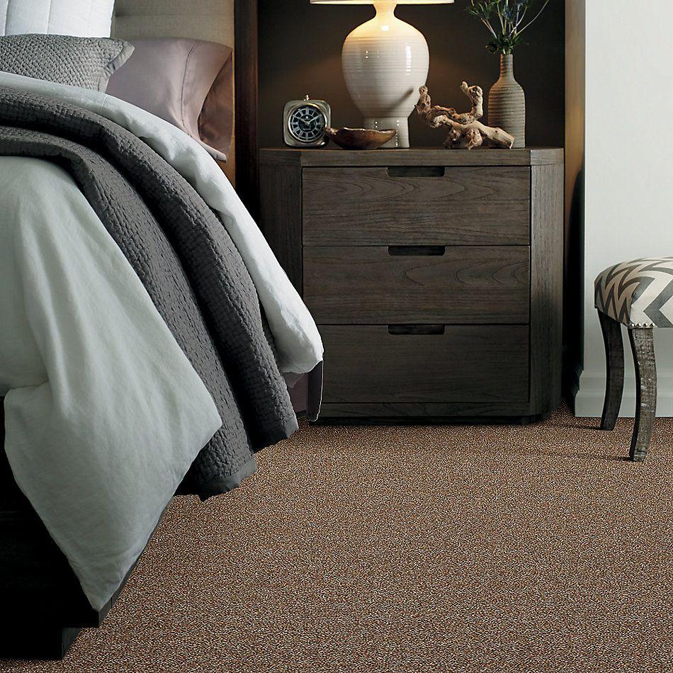 Shaw Floors Bellera Points Of Color II Net Bronze 00602_E9786