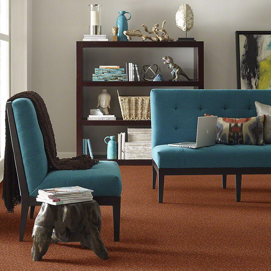 Shaw Floors Anso Premier Dealer Great Effect I 12′ Dark Amber 00602_Q4327