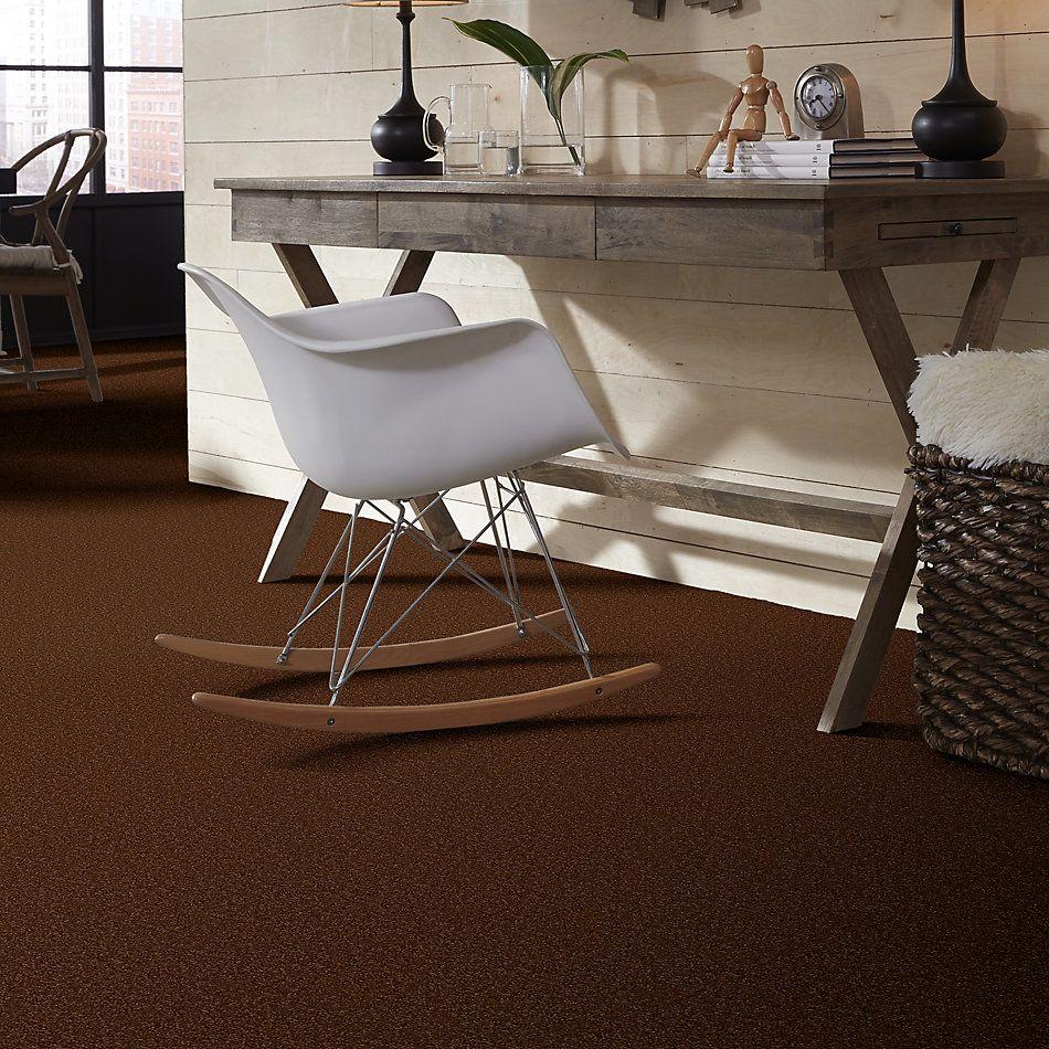 Shaw Floors Queen Harborfields II 12′ Gingerbread 00602_Q4720