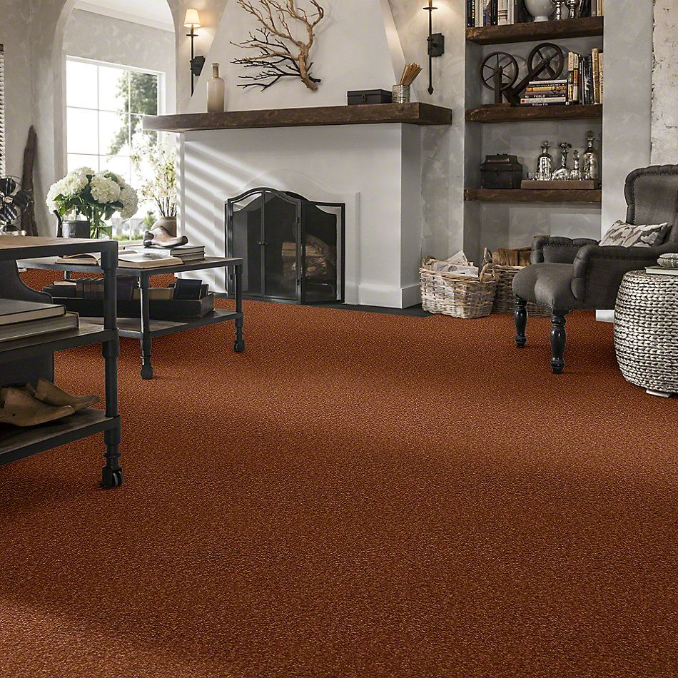 Shaw Floors Shaw Design Center Sweet Valley I 12′ Dark Amber 00602_QC420