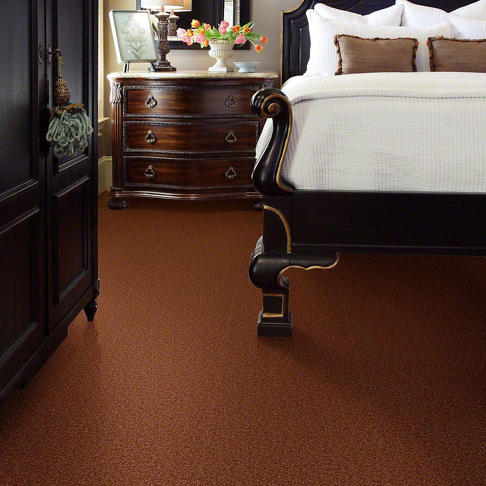 Shaw Floors Shaw Design Center Sweet Valley II 15′ Dark Amber 00602_QC423