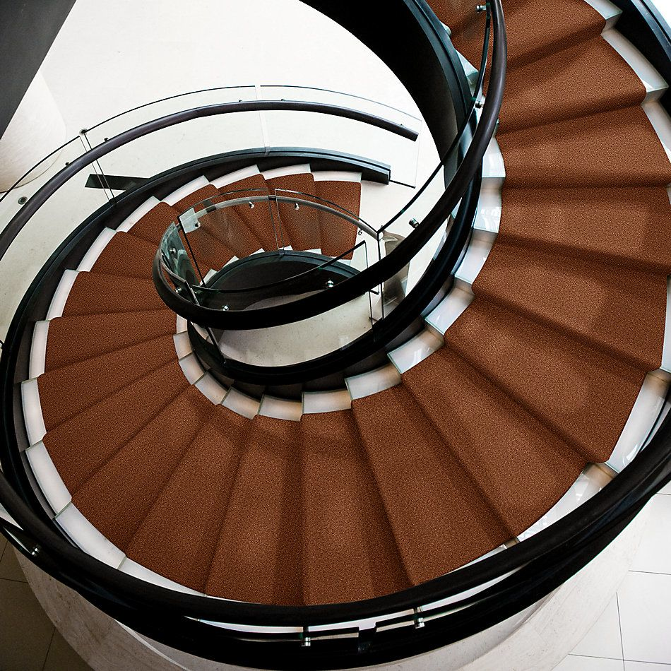Shaw Floors Shaw Design Center Park Manor 15′ Dark Amber 00602_QC466