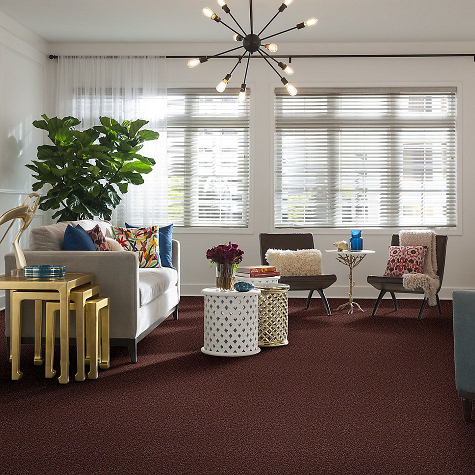 Shaw Floors Shaw Flooring Gallery Ellendale 12′ Flower Pot 00610_5273G