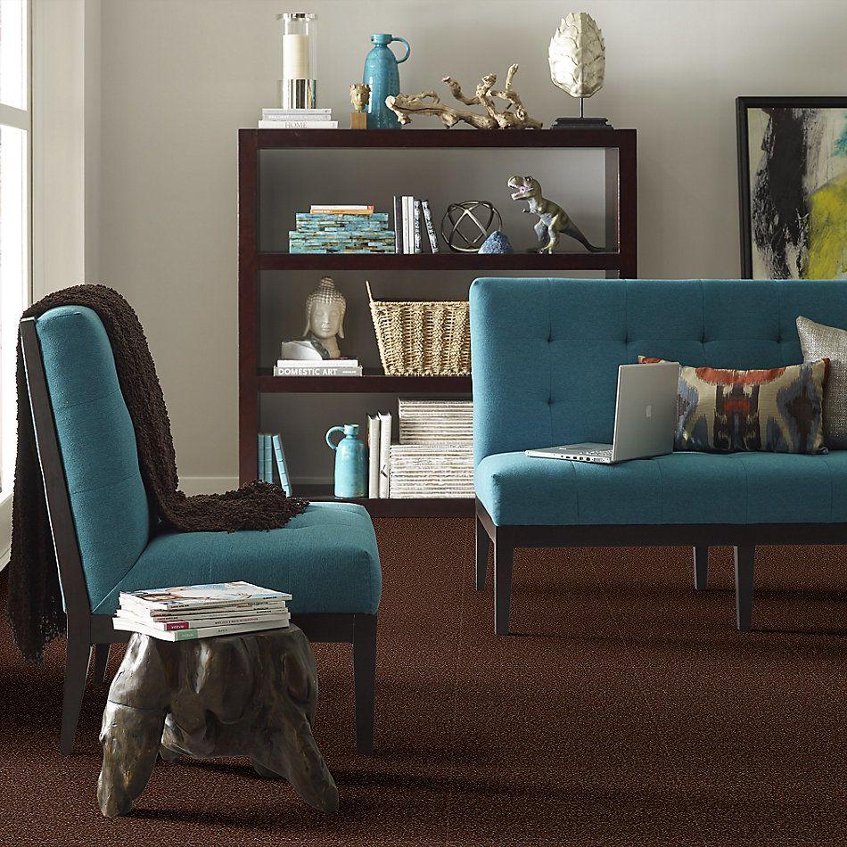 Shaw Floors Value Collections All Star Weekend 1 15 Net Flower Pot 00610_E0793
