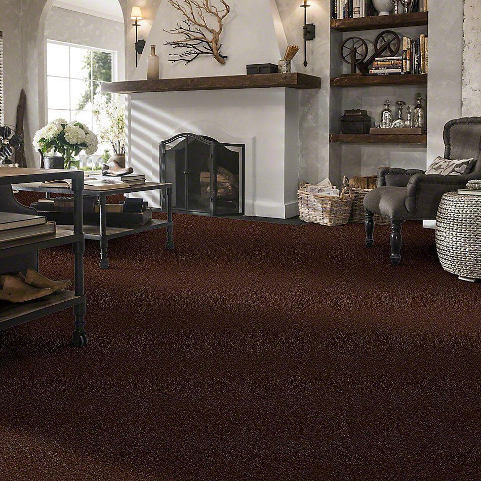Shaw Floors SFA Drexel Hill III 12′ Flower Pot 00610_EA055