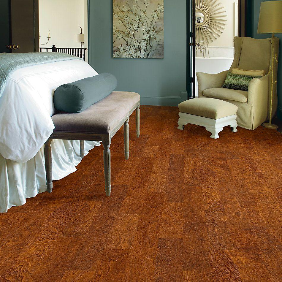 Shaw Floors Dr Horton Riverland Burnside 00627_DR625