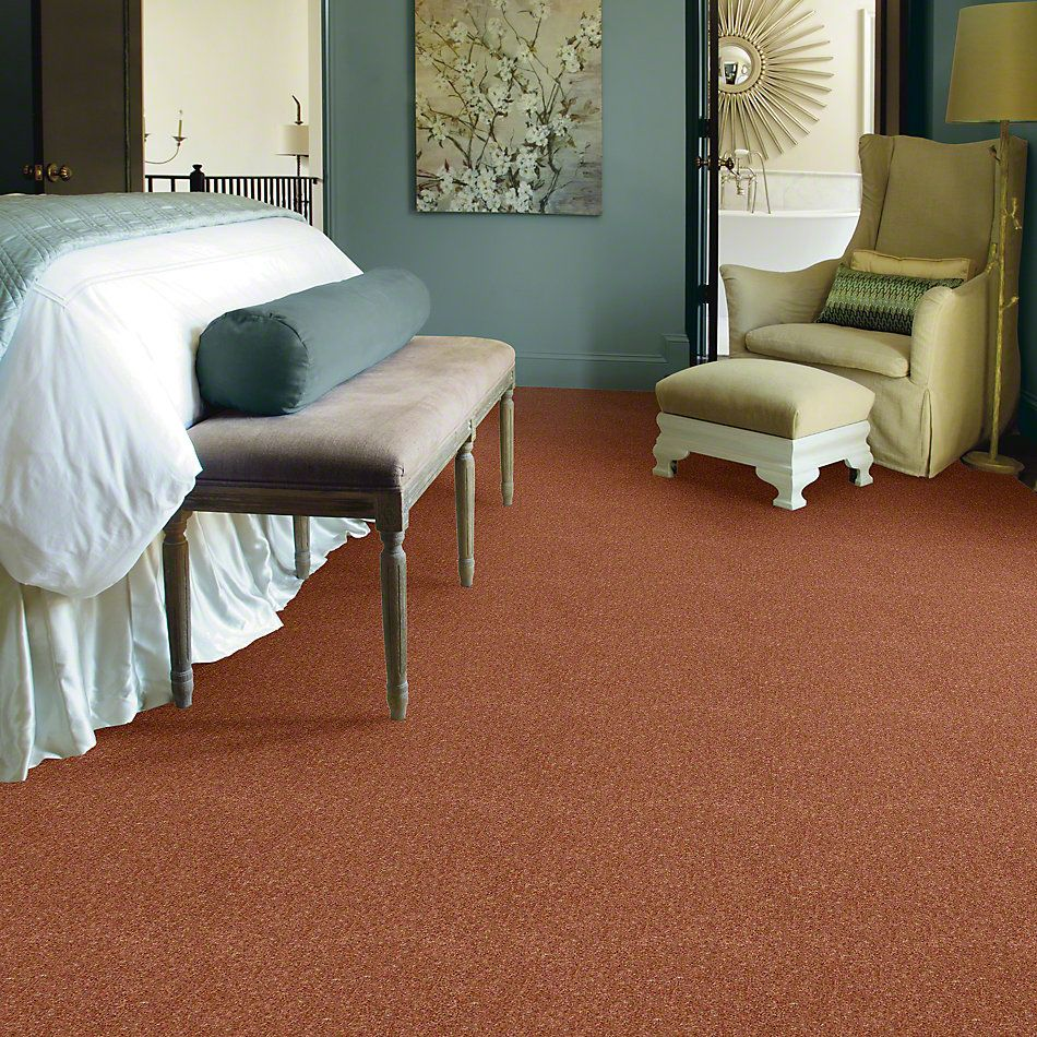 Shaw Floors Value Collections Dyersburg Classic 15′ Net Sunburst 00630_E9193