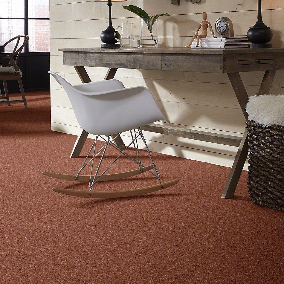 Shaw Floors Value Collections Newbern Classic 15′ Net Sunburst 00630_E9199