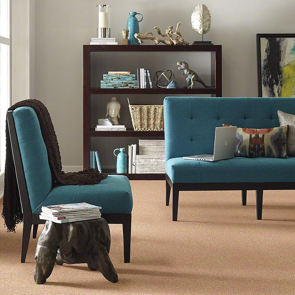Shaw Floors Anso Colorwall Gold Texture Spanish Villa 00630_EA571