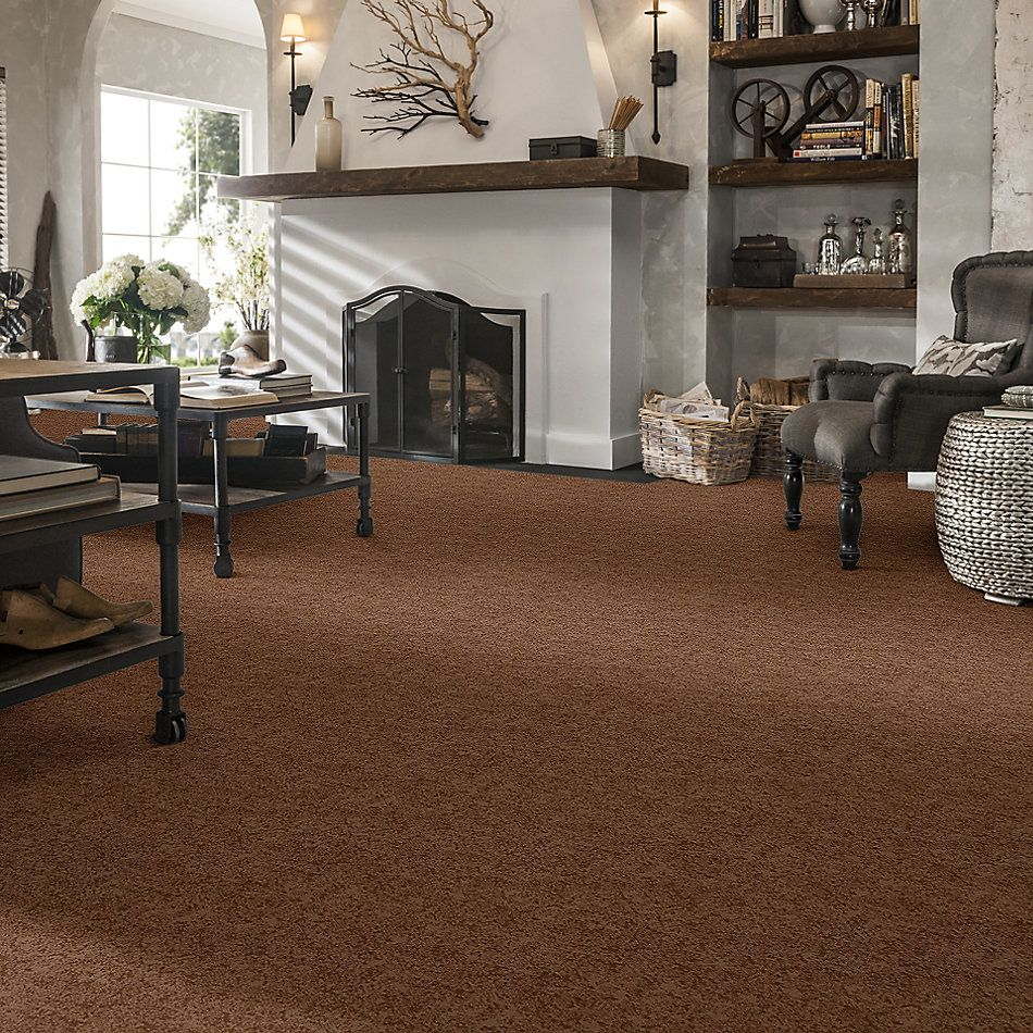 Shaw Floors Caress By Shaw State Of Mind Sunbaked 00650_CC72B