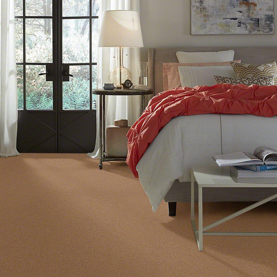 Anderson Tuftex Classic Beauty Desert View 00665_ZZ059
