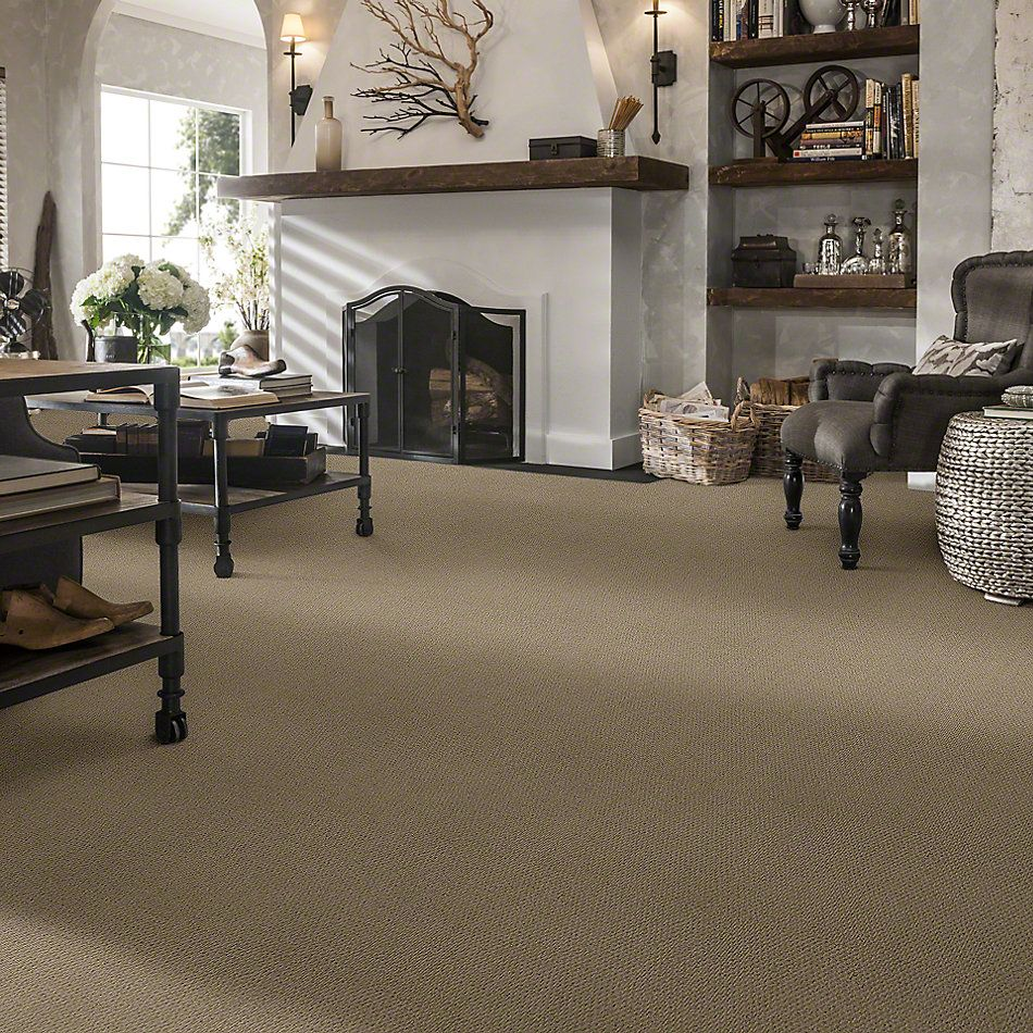 Shaw Floors SFA Live With Me Perfect Taupe 00700_0C198