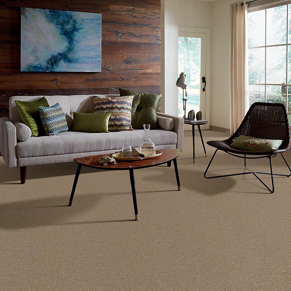 Shaw Floors Shaw Flooring Gallery Highland Cove III 15 Sea Grass 00700_5224G