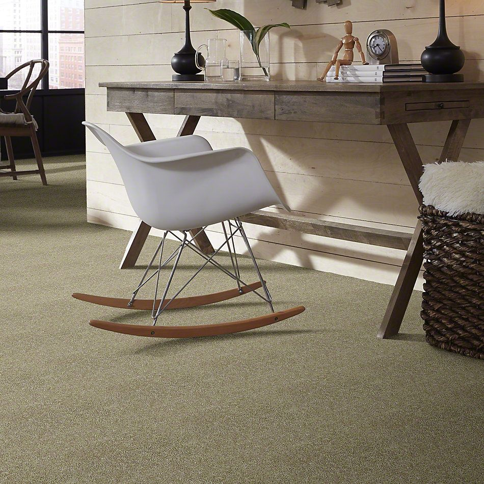 Shaw Floors Full Of Life Taupe Stone 00700_52N09