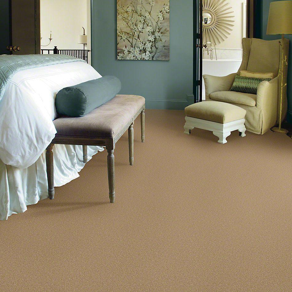 Shaw Floors Foundations Passageway III 12 Sea Grass 00700_52S26